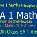 SA 1 Maths Answer Key Sheet 6th, 7th, 8th, 9th, 10th Class Principles of Evaluation/ Solutions 2019